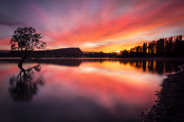 Wanaka Tree Sunrise - a beautiful sunrise in Wanaka, New Zealand 2018
