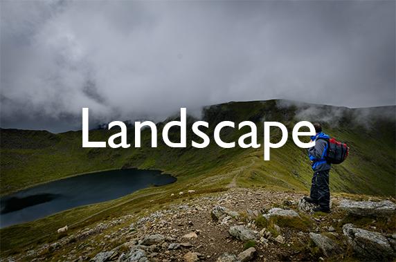 Button to access my Landscape Portfolio Page